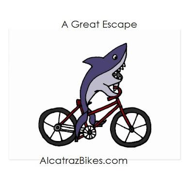Alcatraz Bikes
