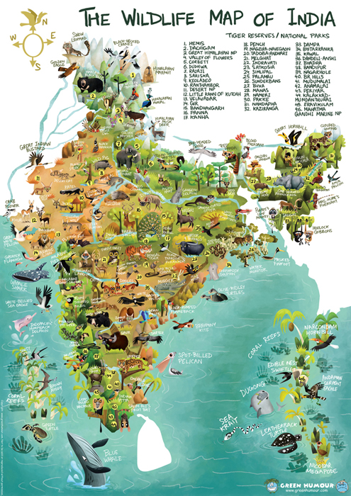 wildlife biodiversity and indian wild ass essay Biodiversity or biological diversity is immensely rich in wildlife and  such  species are black buck, crocodile, indian wild ass, indian rhino, lion.