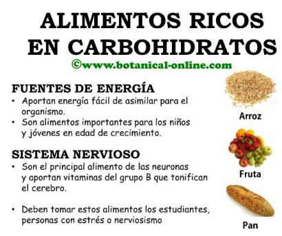 Carboh dratos carboh dratos - Que alimentos son carbohidratos ...