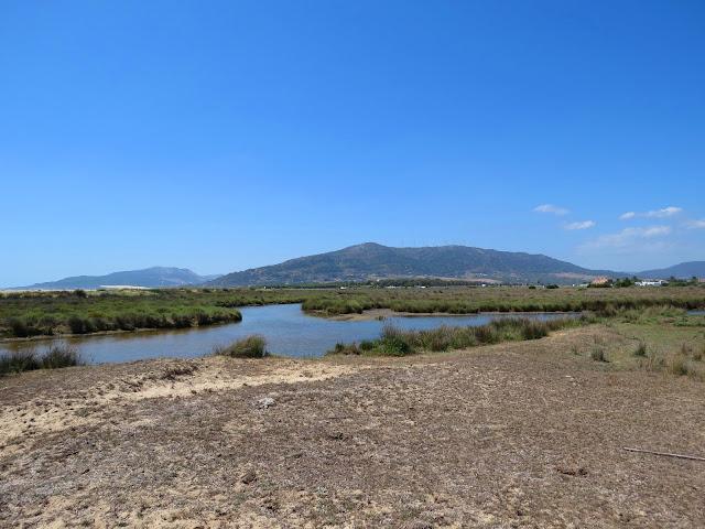 Playa de los Lances - Spain