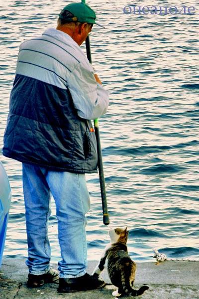 рыбак и фанаты
