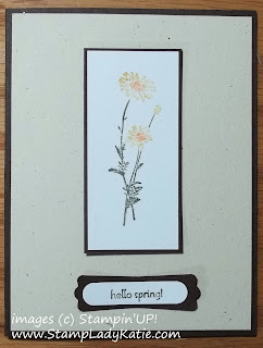 Card made with images from Stampin'UP!'s Springtime Hello Stamp set