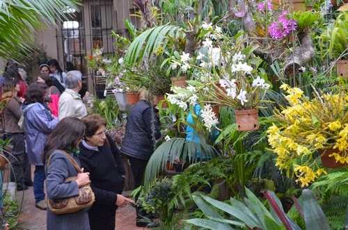 Grupo orquide filo del norte santafesino visita al vivero for Viveros en neuquen