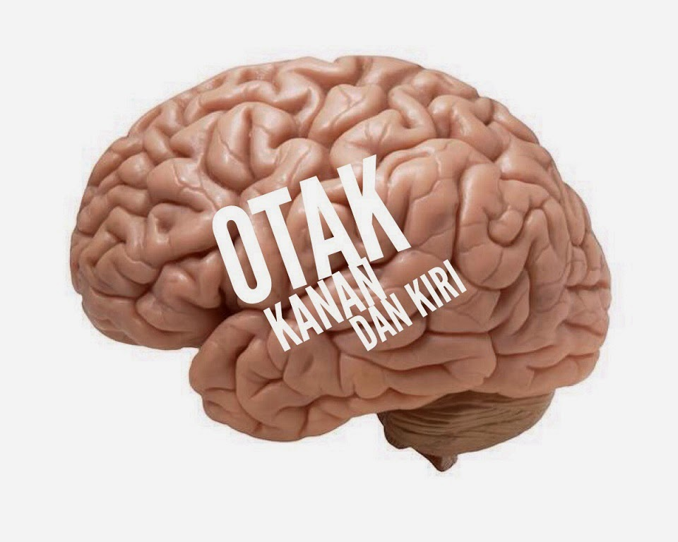 Otak kanan dan kiri