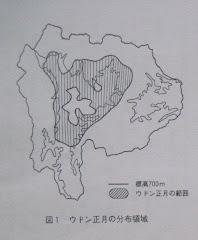 ウドン正月の分布領域