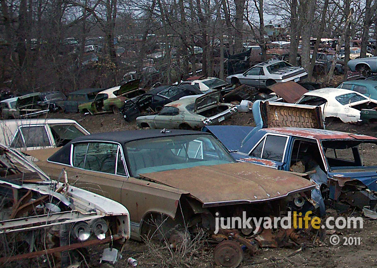 Salvage Cars For Sale Near Me