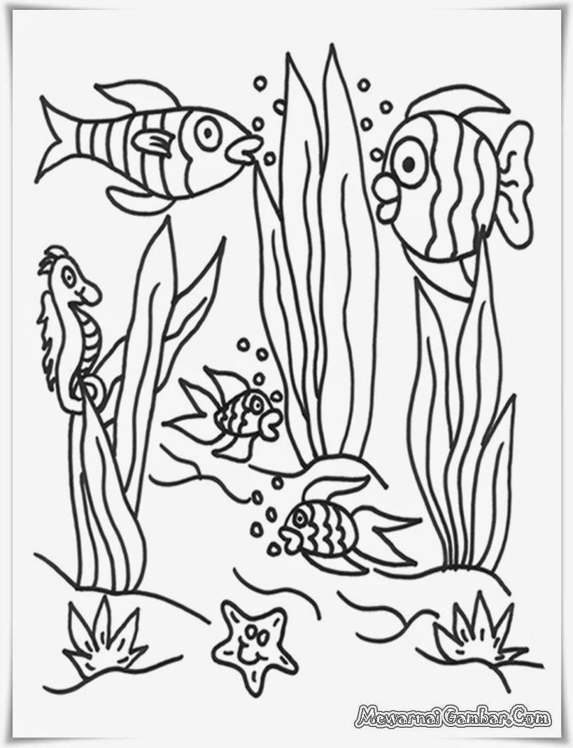 buku mewarnai gambar binatang ikan akuarium