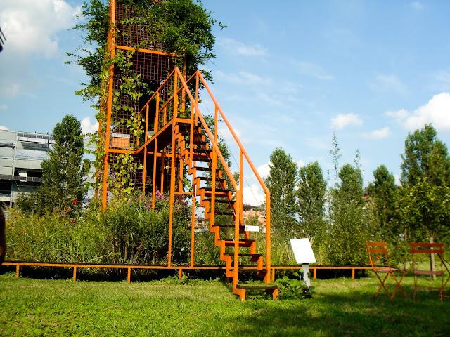 immagine parco PAV: arnie