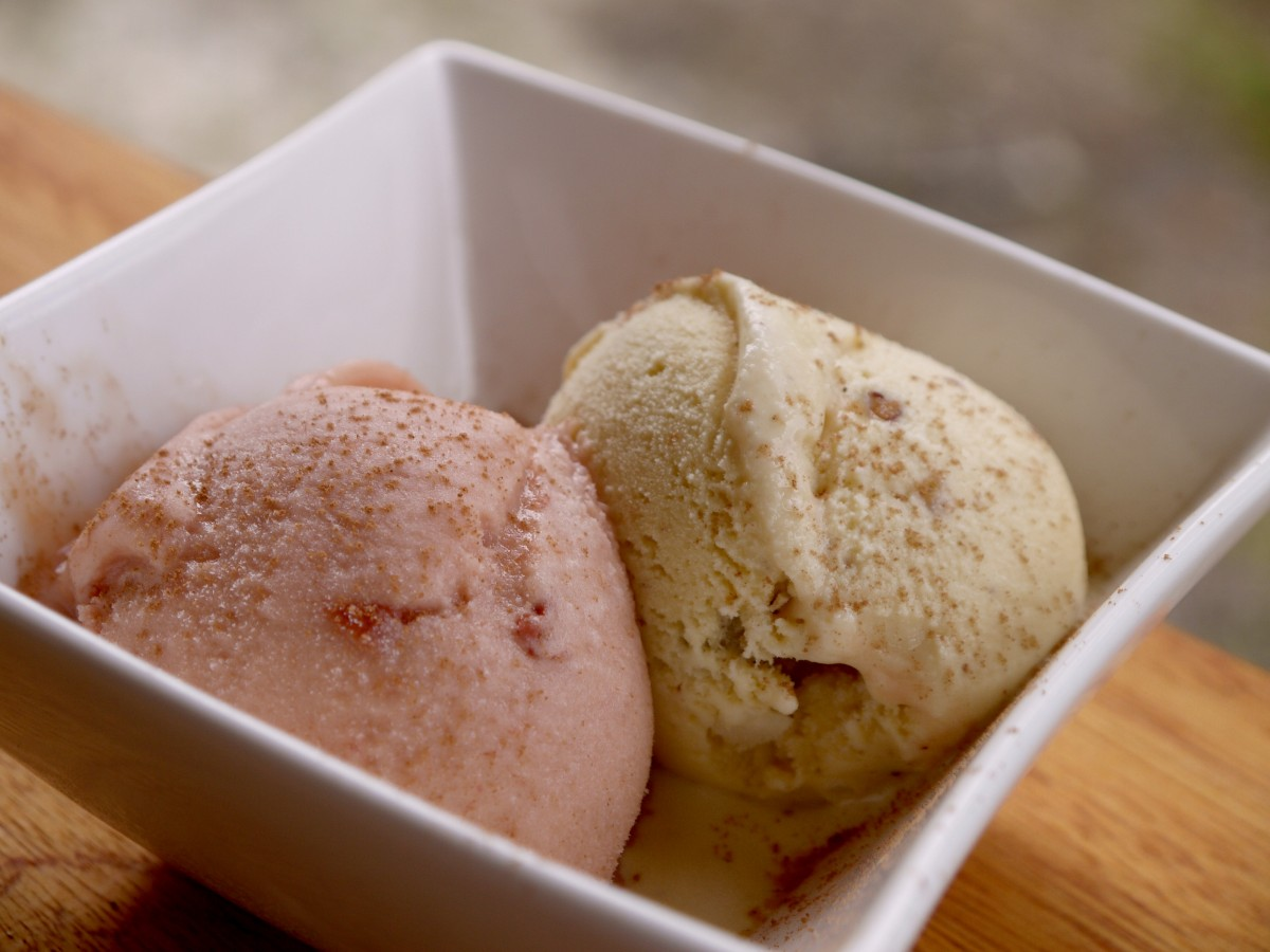 Vanilla Hills Soul Food: plum-cinnamon gelato with rum ...
