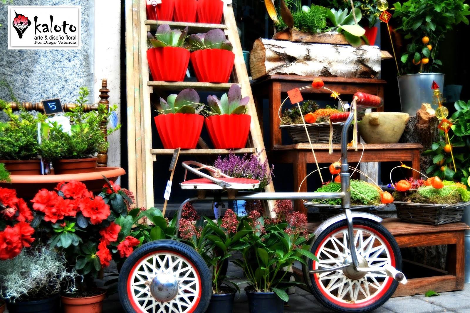 Kaloto Flora Jardines Verticales Jardines De Pared