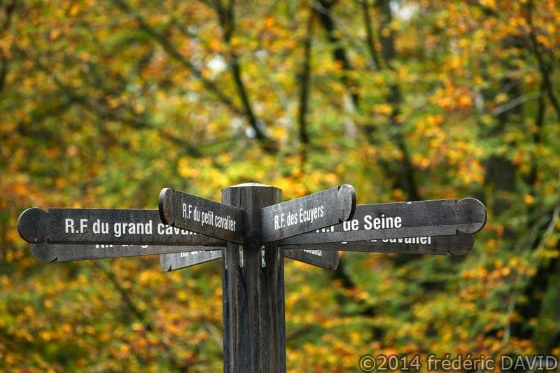 panneau chemin route forêt Rougeau automne Nandy Seine-et-Marne