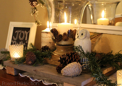 Cozy Felt Pine Cones mixed in with real ones on the woodsy entry table.