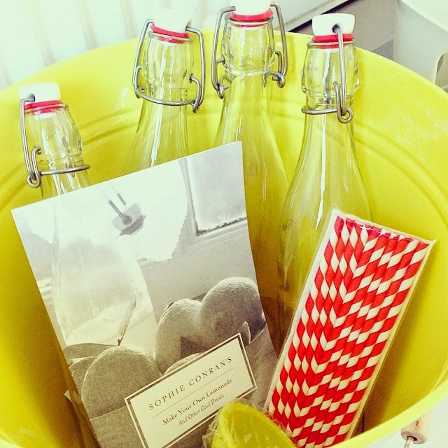 homemade lemonade kit by sophie conran