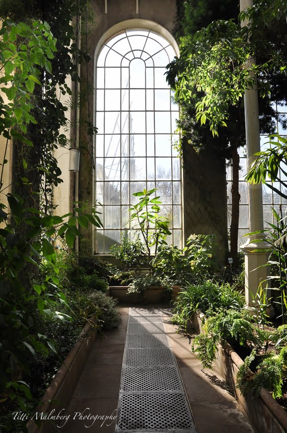 ROYAL BOTANICAL GARDEN, EDINBURGH