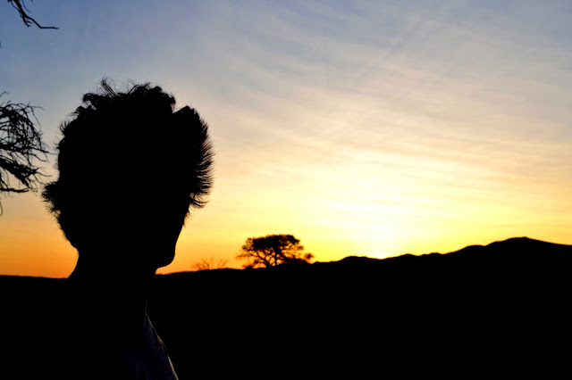 Sunset and silhouette in Namibia