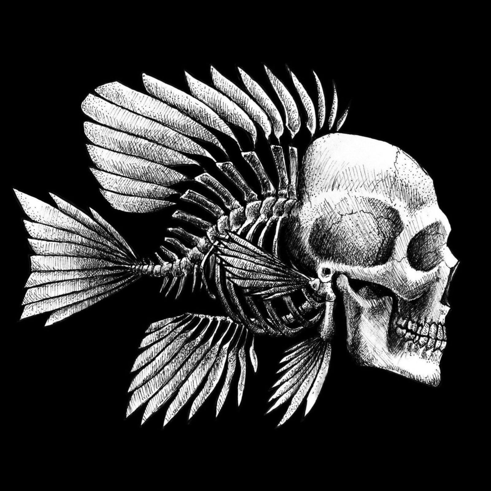 skelet fisk