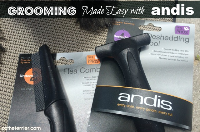Andis grooming tools for pets makes home grooming easy