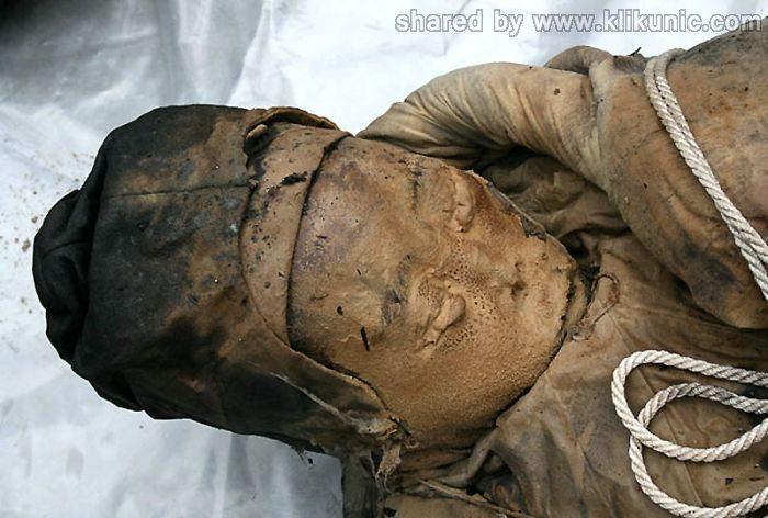 http://1.bp.blogspot.com/-XWWPS9ufXB8/TXiog_h3ChI/AAAAAAAAQuI/NbSWRXQmvJs/s1600/mummy_11.jpg