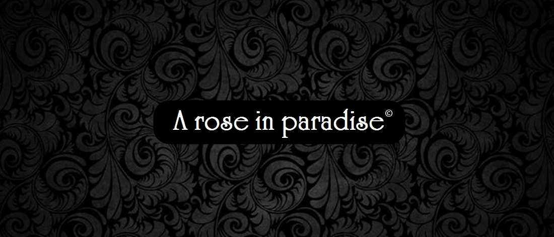A rose in paradise