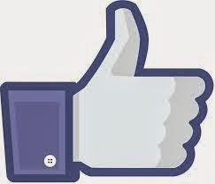 Page facebook du blog