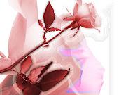 amor tierna imagen imagenes tiernas de amor