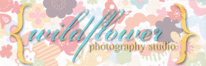 please visit my photography blog!