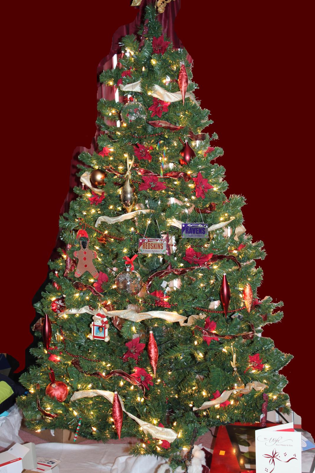 Christmas Tree Farm Baltimore