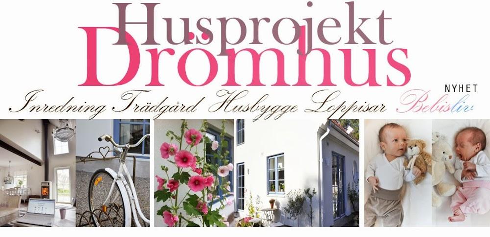 Husprojekt Drömhus