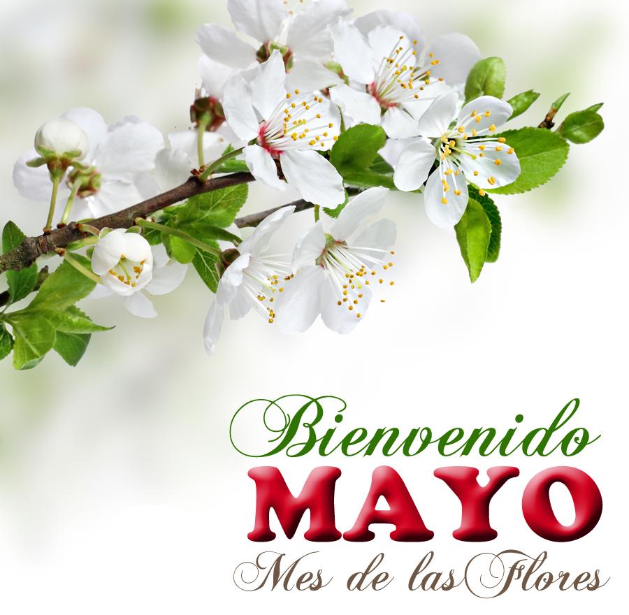 Foro eventos para el mes de mayo 2017 for Eventos madrid mayo 2017