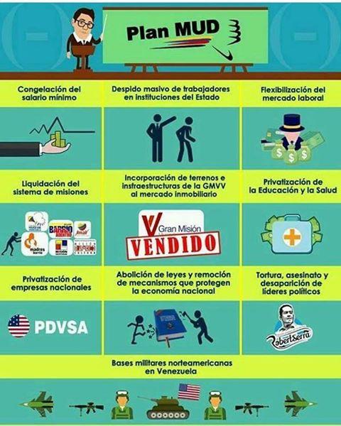 Programa de la MUD