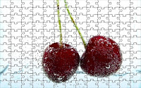 Twin red cherries puzzle