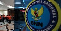 Badan Narkotika Nasional - Recruitment For SMP, SMA, SMK, D3, S1 Non CPNS Staff BNNP August 2015