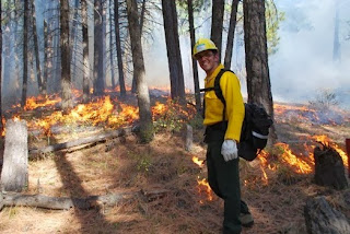 Fire management planning on Salish and Kootenai tribal lands in Montana.