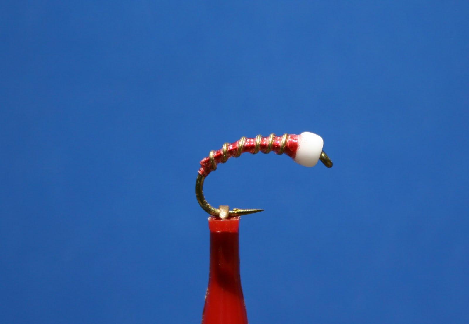 Blood Midge Pupa
