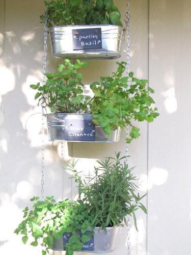 3 tin herb garden