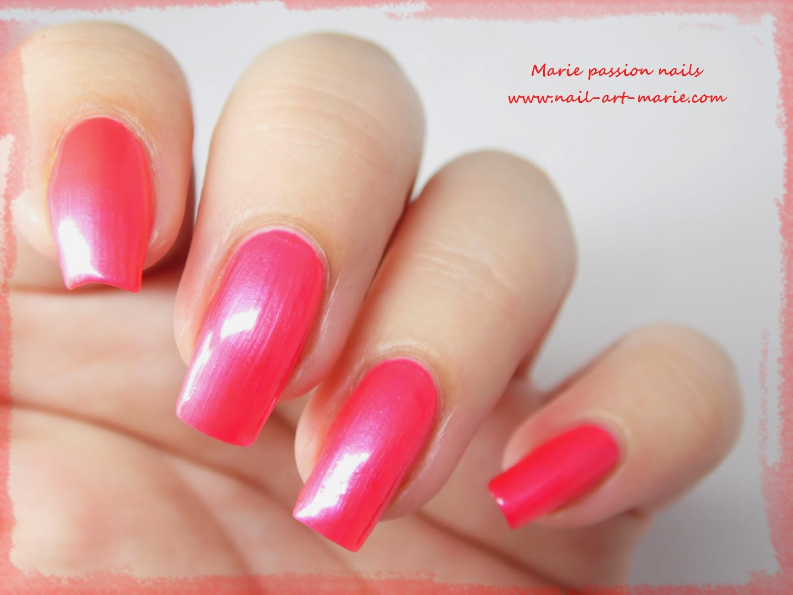 LM Cosmetic Fonte Nova8