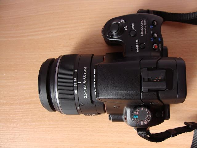 DSC05981x.jpg