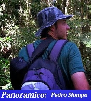 Pedro Hernrique Slompo