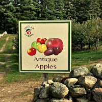 New England Fall Events_Smolak Farms_Antique Apples
