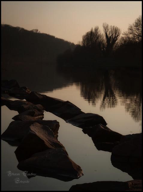 Ein Frühlingstag - Landschafts- und Naturaufnahmen der Neckar