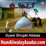 http://audionohay.blogspot.com/2014/10/syed-shujat-abbas-nohay-2015.html