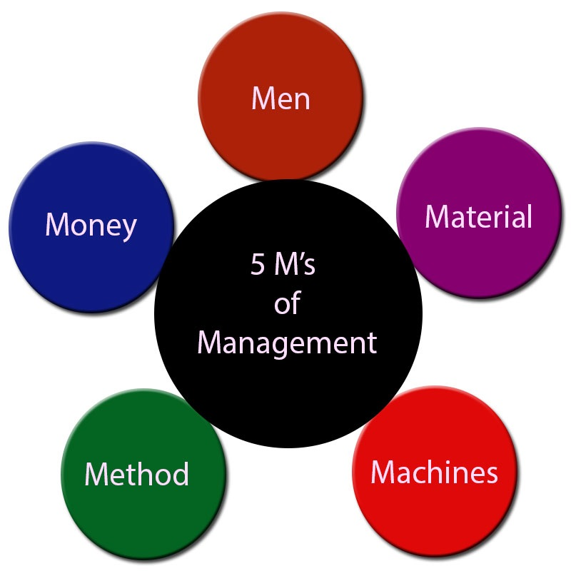 5 m of management pdf