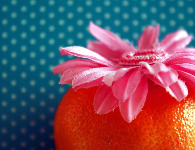 Pink Silk Flower on Orange