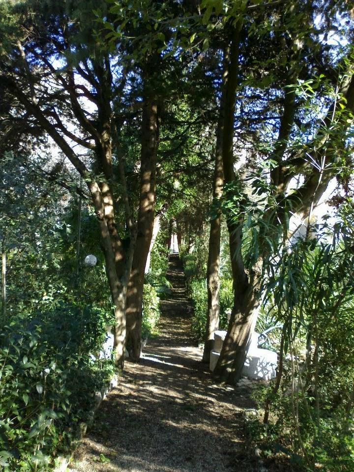 Il viale monumentale del giardino