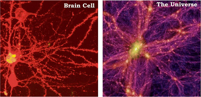 big data - neurons and galaxies