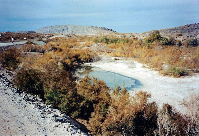 http://1.bp.blogspot.com/-X_4SZYKLA1o/UJCTh4I3IYI/AAAAAAAAESg/isqLCcVt66w/s1600/Salton+Sea+0010.jpg