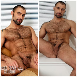 Alex é peludo e parrudo