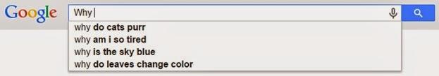 Why Google AutoSuggest