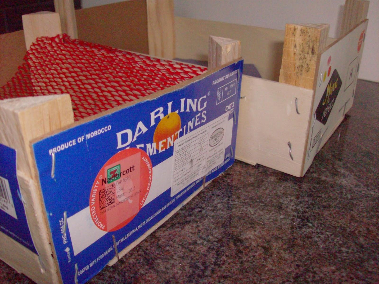 waste packaging, waste reduction, tj's green adventure