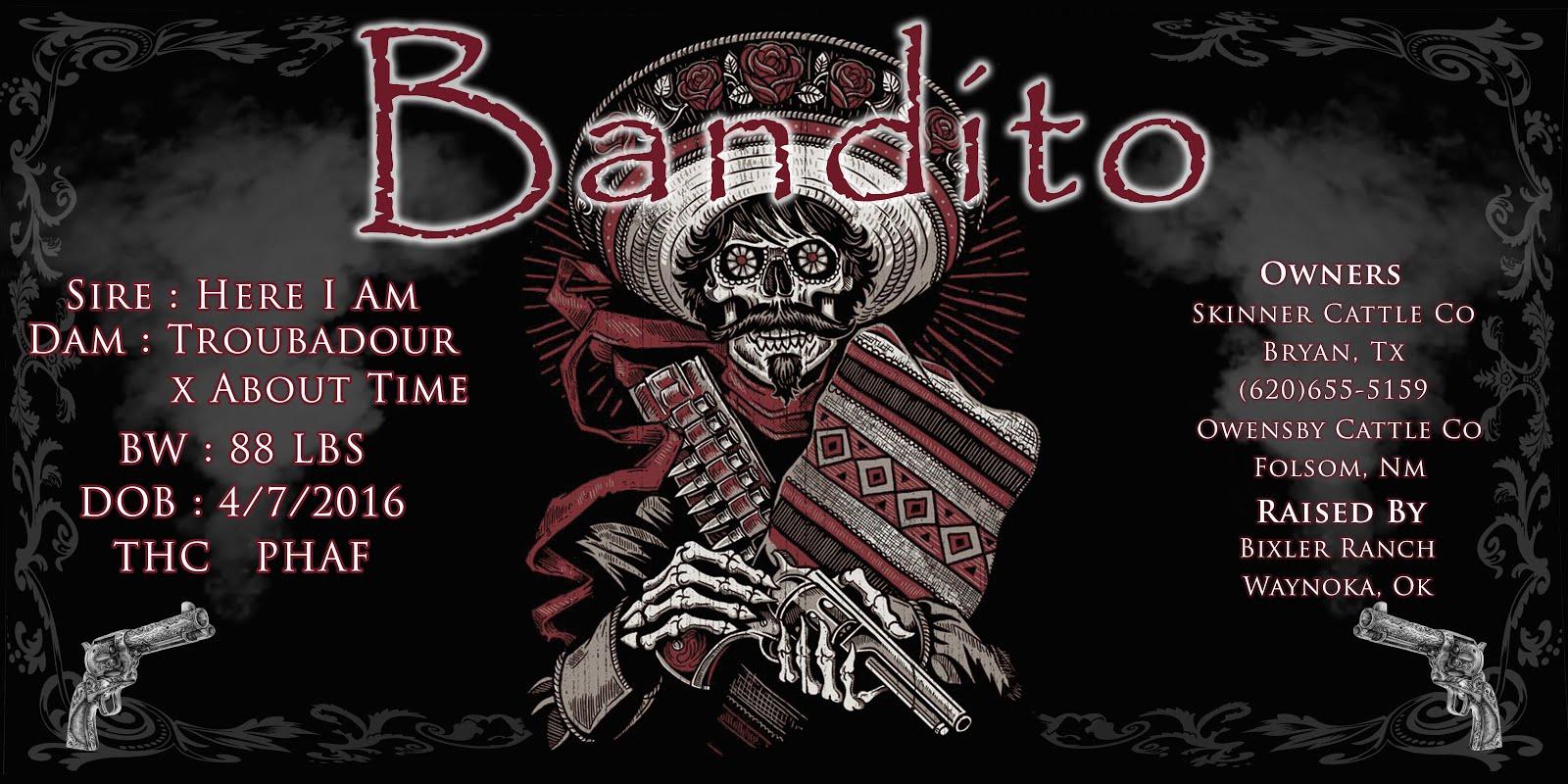 Bandito Banner